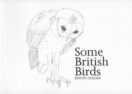 Edwyn Collins, Some British Birds