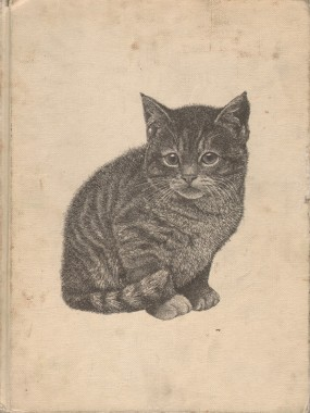 Howard Loxton, all color book of Kittens